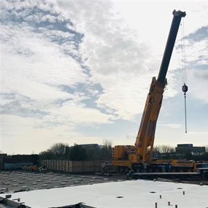 March 2019 - Crane arrived